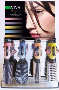 Picture of Viva Bright Professional Hairbrushes In Display (pack of 144)
