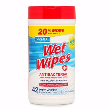 Picture of Anti- Bacterial Wet Wipes 42 count